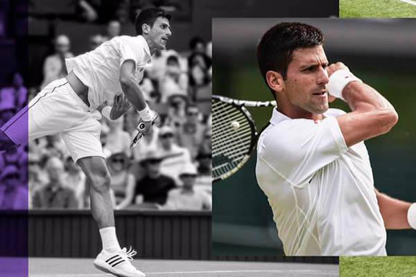 La carrera de Novak Djokovic en 2015