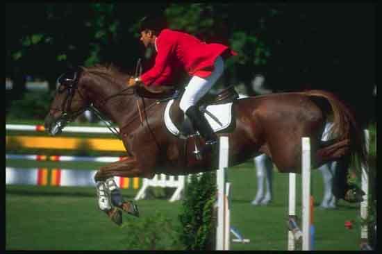 equitacion11