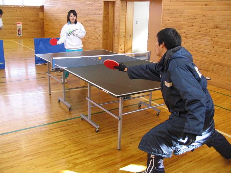 Tenis de mesa deportes for Mesa ping pong carrefour