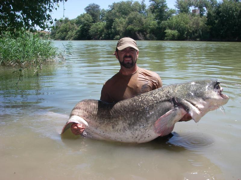 El vídeo la pesca en la esfera de Saratov