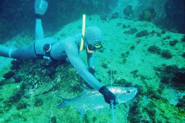 pesca_submarina